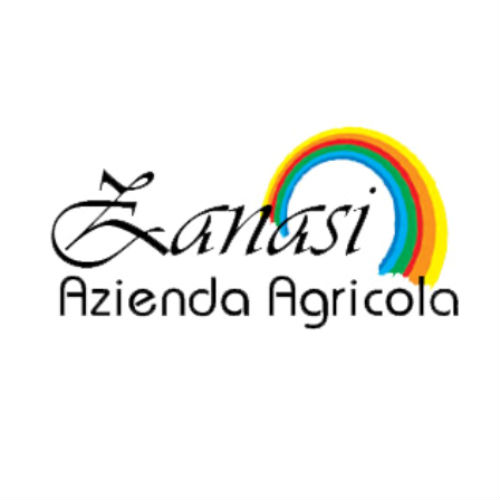 Zanasi Logo